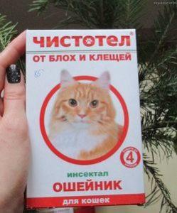 oshejnik-ot-kleshhej-2_3