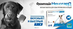 tabletki-ot-kleshhej_4