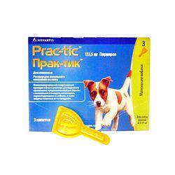 Обзор средства Практик от клещей для собак