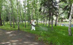 Как производится обработка парков от клещей