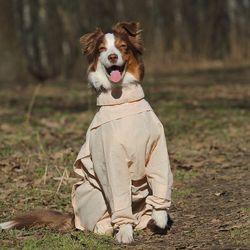 Собака в защитном комбинезоне