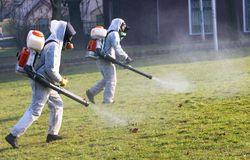Обработка территории против насекомых