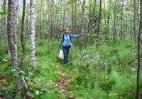 Одежда для леса